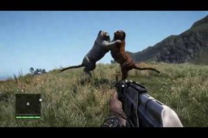 FAR CRY 4 - ALL ANIMAL FIGHTS - PART 1!!!!