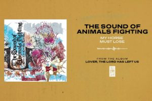 "The Sound Of Animals Fighting ""My Horse Must Lose"""