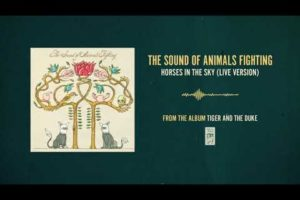 "The Sound of Animals Fighting ""Horses In The Sky (Live Version)"""