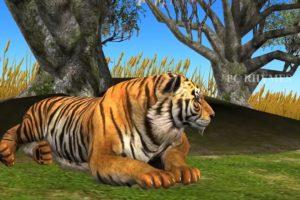 Lion King Vs Tiger Cartoon Animal Fights | Lion Attacks Tiger | Wildlife Animal Planet