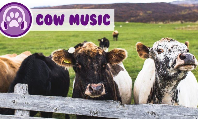 Help my cow relax! Get the best milk out of your cattle! Moosic!