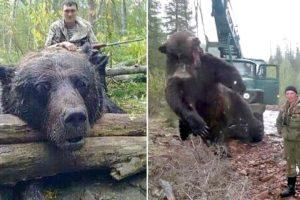 30 Biggest Creatures Ever Captured !