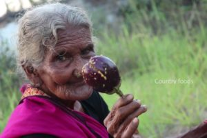 Yummy Brinjal Masala | My Grandma Cooking Brinjal Masala | Country foods