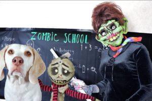 Dog Rescues Zombie Boy From Zombie School! Funny Dogs Maymo & Potpie vs Zombie Teacher