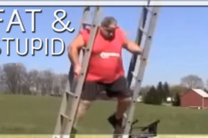 FAT & STUPID - Fail Compilation ? ?
