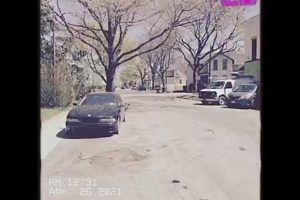 Nwb CGotti Goes BMW Shopping Rochester Ny Ghetto Hood Fights