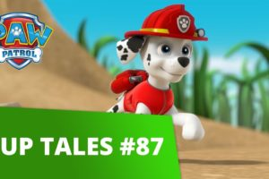 PAW Patrol | Pups Save Tiny Marshall | Rescue Episode | PAW Patrol Official & Friends!