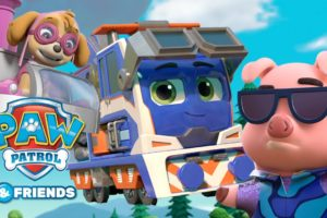 PAW Patrol and Mighty Express Animal Rescue Episodes! Cartoons for Kids Compilation 52