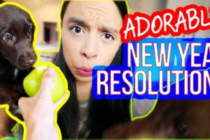 CUTEST PUPPY: NEW YEARS RESOLUTIONS  *Don't Miss This*