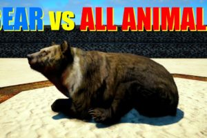 Far Cry 4 Animal Fight - Giant White Chested Bear vs All Animals
