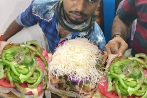 GRILLED PANEER CHEESE SANDWICH | Price Start 170 Rs | Mumbai Street Food