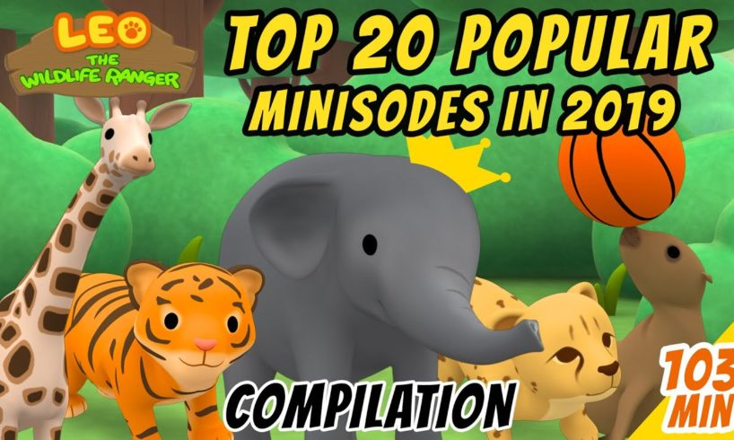 Top 20 Popular Animals in 2019 Compilation! | Leo The Wildlife Ranger | Fun Animal Facts For Kids