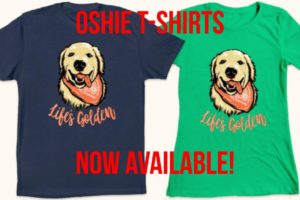 """""""LIFE'S GOLDEN"""" OSHIE TEEs SUPPORTING DOG RESCUES!   Oshies World"""
