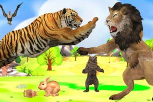 Lion VS Tiger - Who will win in a fight ? 3d Animal Fights Videos  Wild Animal Epic Battle