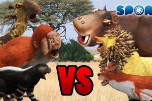 Animal Fight Club 2 | SPORE