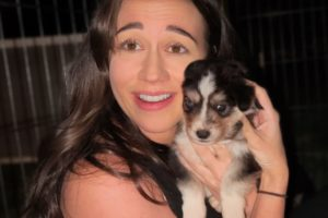 Convincing Colleen to Adopt a Husky Puppy for Her Twins!