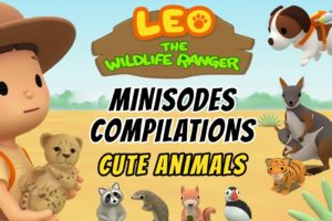 Cute Animals Minisode Compilation - Leo the Wildlife Ranger   Animation   For Kids