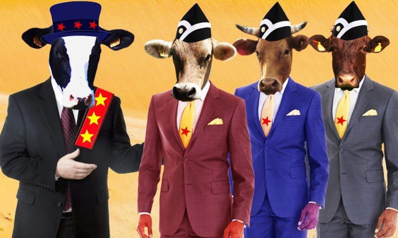 Enjoy Cow Dance | Funny Cow Dance | Funny Pet Animals | Meme Coffin Dance COVER