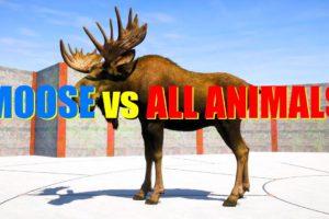 Far Cry 5 Arcade - Animal Fight: Moose vs All Animals