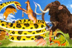 Giant Mammoth vs Giant Snake Biggest Animal Fight Buffalo Save From Camel By Giant Snake Fight