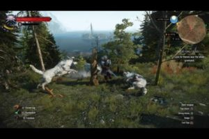THE WITCHER 3 WILD HUNT - ALL ANIMAL FIGHTS - PART 1!!!!