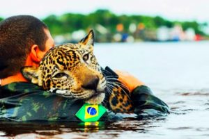 The Most Beatiful Animal Rescues You'll Ever See...