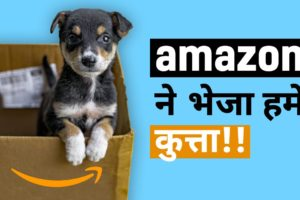 This Puppy was delivered to us in a cardboard box! | Dog Rescue