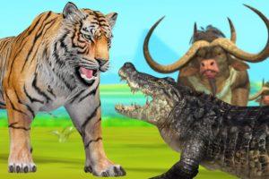 Tiger Attack Buffalos Crocodile Fight Wild animal Fights Videos Giant Buffalo Wild Crocodile Tiger